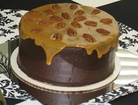 Cake_-_chocolate_turtle